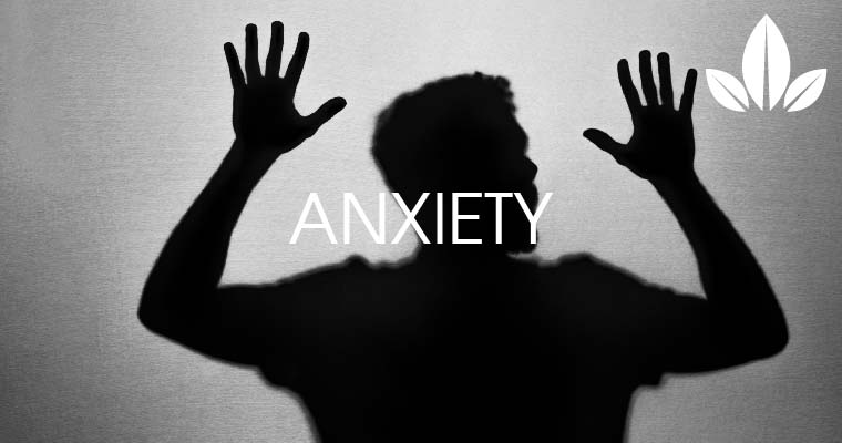 How CBD help in anxiety