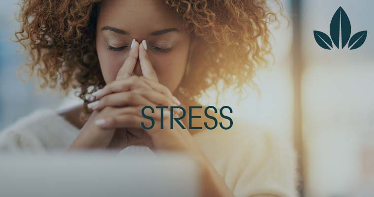how CBD help in stress