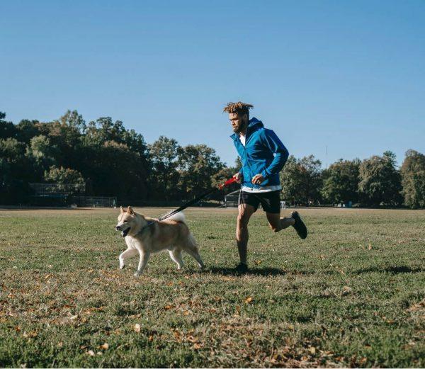 deporte con el perro